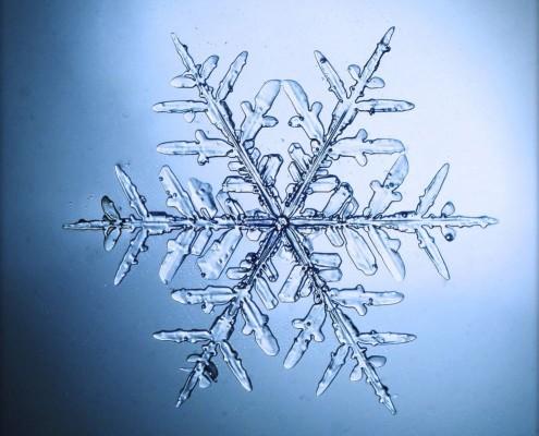 BAINS DÉRIVATIFS. La fraîcheur de l'eau, ou plus facilement la Poche de gel, pour se maintenir en forme en régulant la température interne. La Méthode France Guillain est faite de la combinaison d'une alimentation intelligente et universelle (Miam-Ô-Fruit et Miam-Ô-5), de la fraîcheur du Bain dérivatif ou poche de gel, de l'argile et du soleil doux, ces cadeaux de la nature, clefs d'une bonne forme physique.